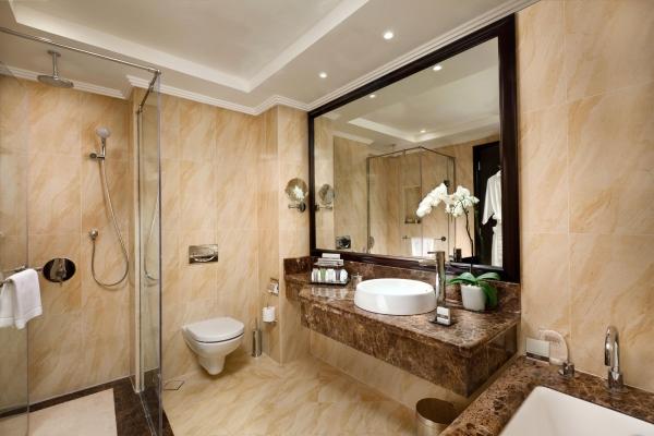 فندق باهي قصر عجمان - حمام الغرفة ديلوكس 1